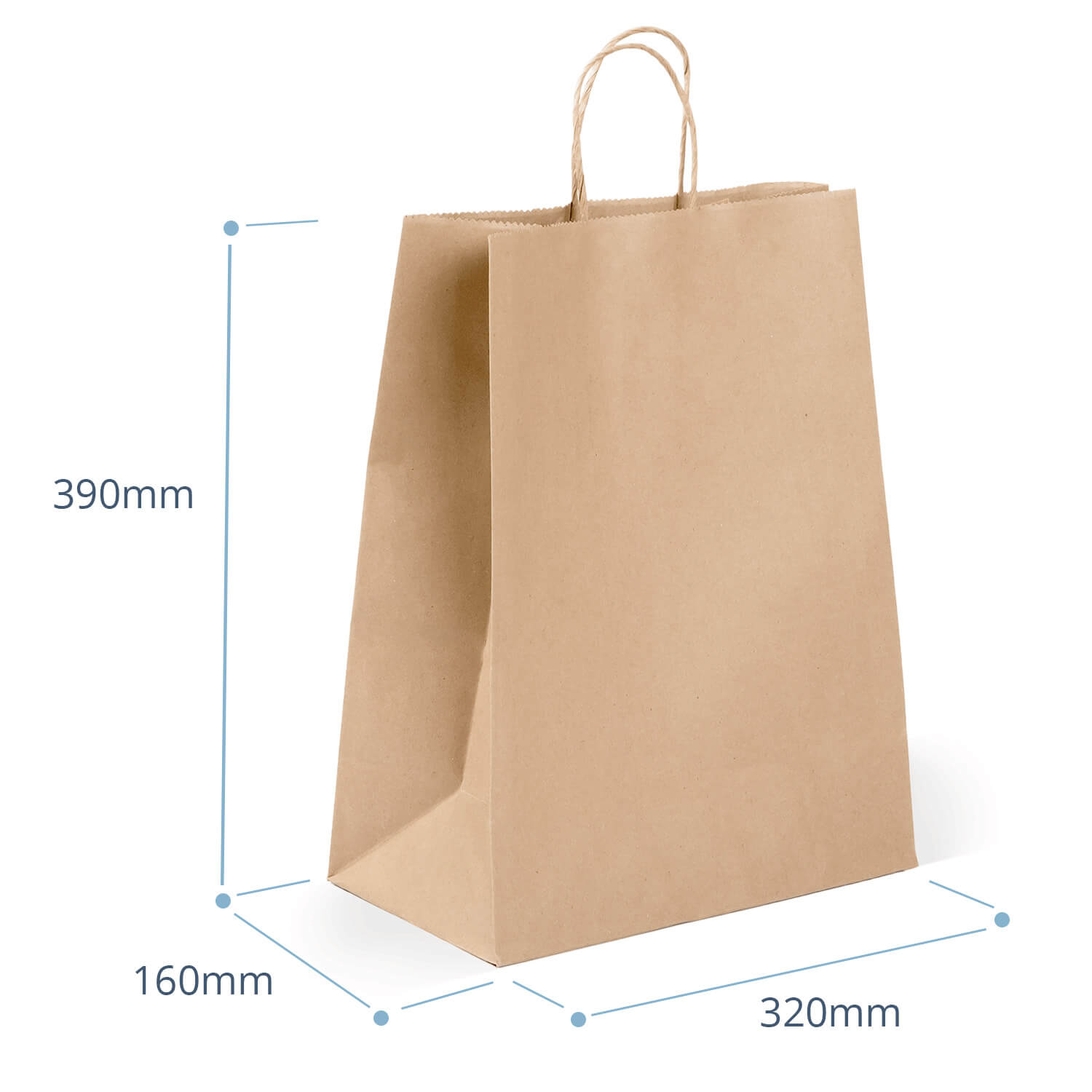 Heavy Duty Large Bag with Twist Handle (packed 200)